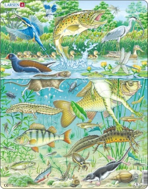 Puzzle - Der Teich, Format 36,5x28,5 cm, Teile 50