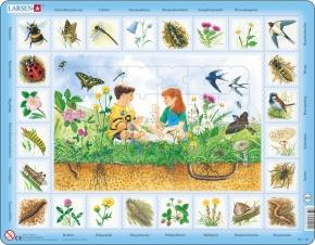 Puzzle - Auf der Wiese,  Format 36,5x28,5 cm, Teile 48