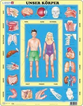 Puzzle - Unser Körper,  Format 36,5x28,5 cm, Teile 35
