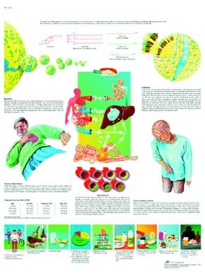 Anatomische Lehrtafel, Cholesterin